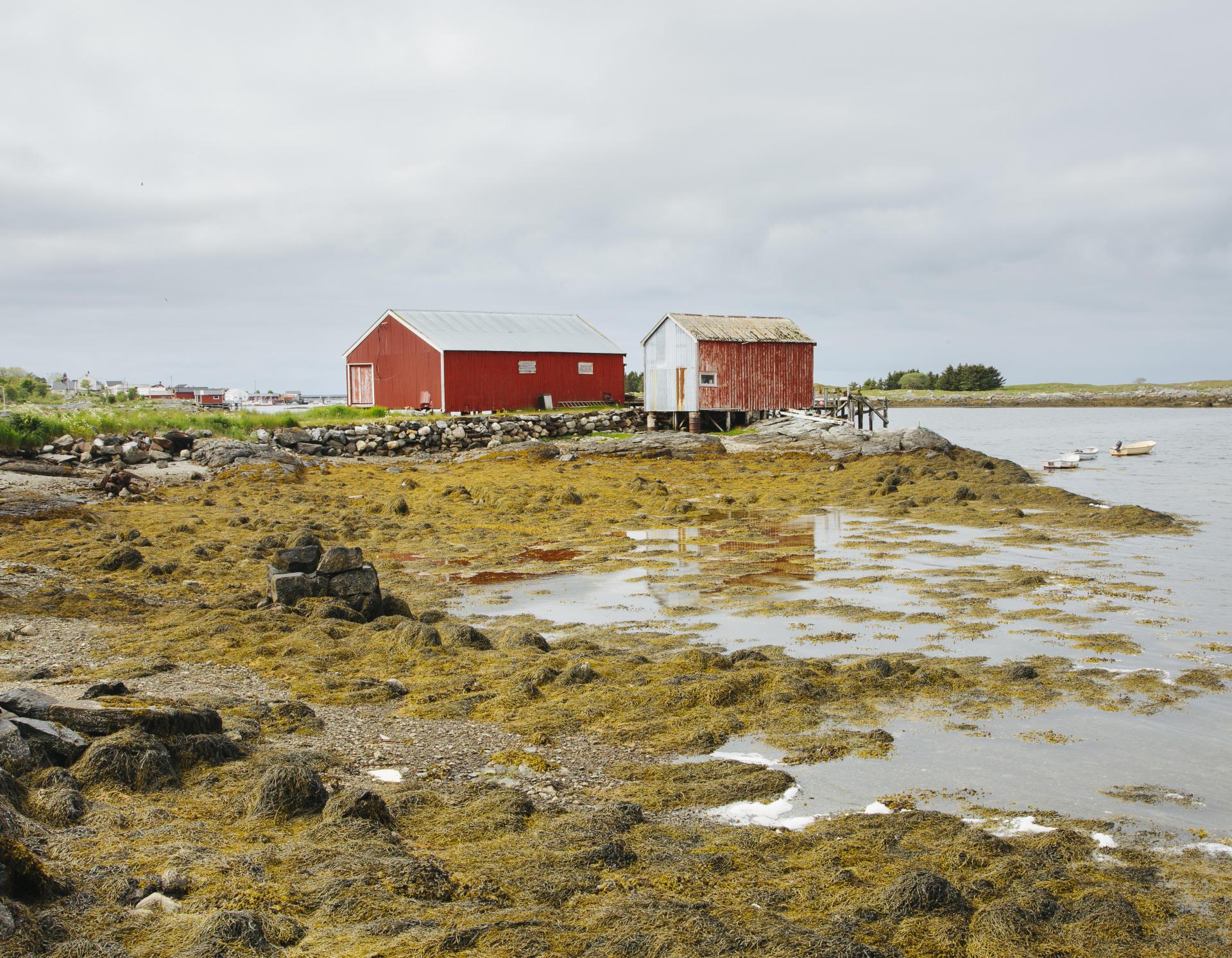Nes, sur l'île de Vega, un petit port de pêcheurs traditionnel.