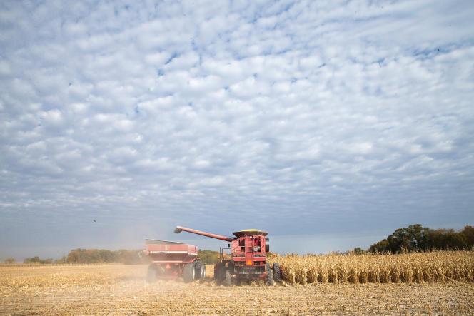 Les récoltes ont été plus qu'abondantes presque partout dans le monde, et les incertitudes économiques ont empêché de fortes hausses de consommation.