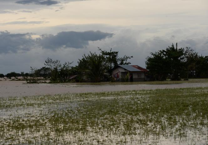 Maisons et champs de riz submergés par de fortes pluies provoquées par le typhon Koppu en octobre, dans la province de Nueva Ecija, au nord de Manille.