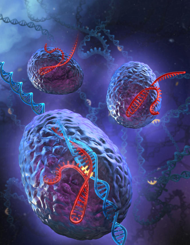 Vue d'artiste d'une modification génétique deséquences ADN selon latechnique Crispr-Cas9.