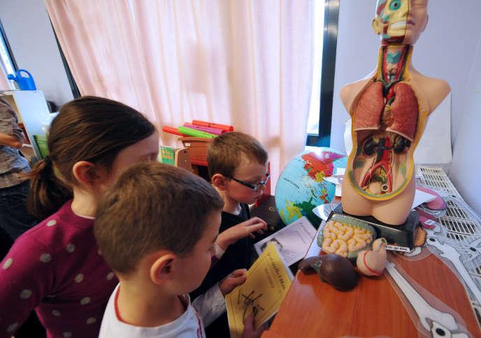 Des élèves de CE1 travaillent en classe avec un mannequin d'anatomie, le 5 décembre 2011 à l'école privée Immaculée Conception de Seclin.