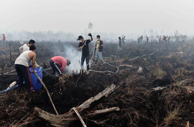 Des habitants de Palangkaraya, en Indonésie, tentent d'éteindre un incendie le 27 octobre.