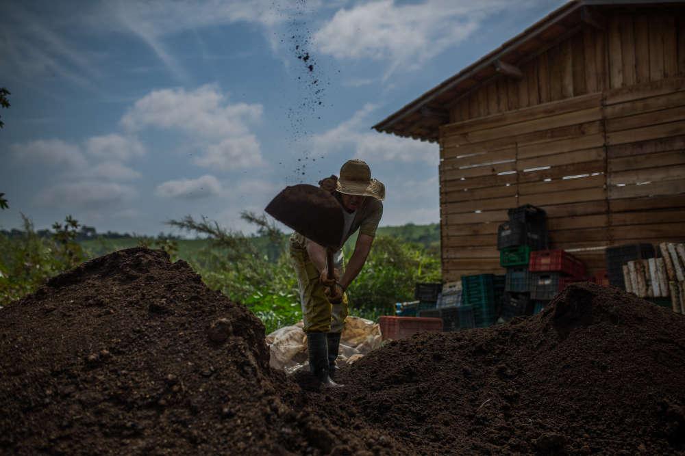 Un paysan travaille sur la production de compost de la ferme de Santa Adelaide, située à une centaine de kilomètres de Sao Paulo.