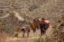 """Une image du documentaire péruvien et espagnol de Javier Corcuera, """"Sigo Siendo"""" (""""Kachkaniraqmi"""")."""