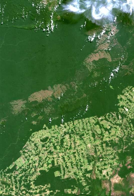 Vue satellite de l'Ouest du Brésil, qui témoignede la déforestation amazonienne en août 2014