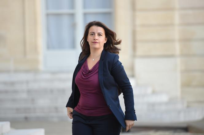 Cécile Duflot le 15 novembre 2015 à l'Elysée.