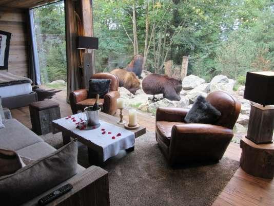 Cinq safaris pr s de chez vous for Chambre zoo de la fleche