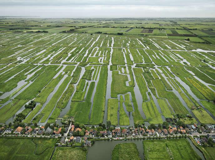 Pays-Bas, 2011. Les polders de Grootschermer (Hollande-Septentrionale).