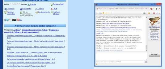 L'opérateur d'IslamReligion.com mettra 30 minutes à reconnaître l'obédience salafiste du site.