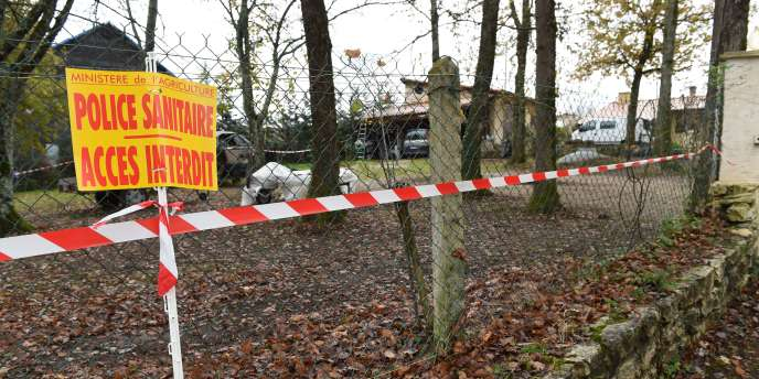 Un élevage de volailles infecté par le virus H5N1 à Biras, en Dordogne, le 25 novembre 2015.