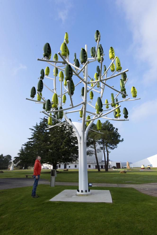 Le moindre souffle d'air entraîne la production d'électricité par les feuilles de l