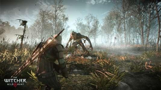 A lui seul, The Witcher III : Wild Hunt occupe 30 Go d'espace disque sur Xbox One et 50 Go sur PlayStation 4, soit 10 % de la capacité totale de cette dernière.