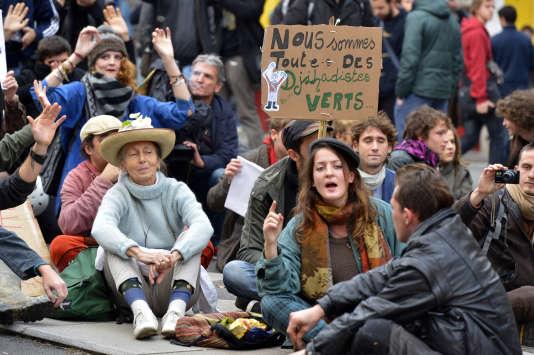 Durant une manifestation en souvenir de Rémi Fraisse le 22 novembre 2014 à Nantes.
