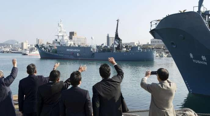 Le Japon a précisé que ses prises de baleines de Minke seraient réduites des deux-tiers à 333 cétacés.