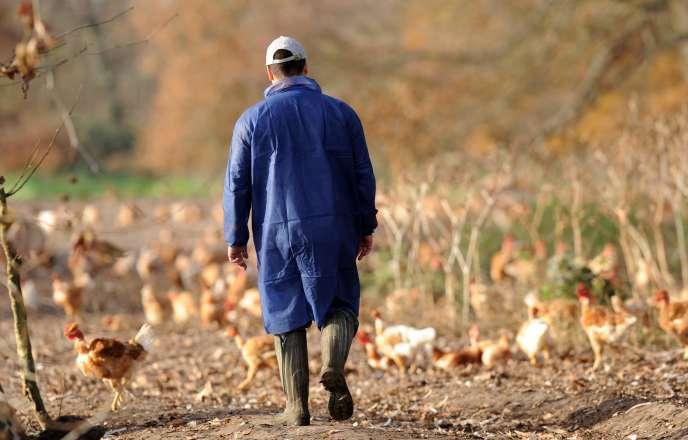 Si vous êtes marié, pacsé ou concubin d'un exploitant agricole, et que vous travaillez régulièrement sur l'exploitation, la loi vous impose depuis 2006 de choisir un statut pour bénéficier d'une protection sociale.