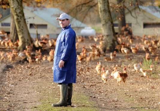 Une exploitation aviaire à Vielle-Soubiran, dans le sud-ouest de la France, le 10 décembre 2015.