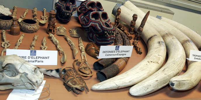 Des défenses d'éléphants et autres objets en ivoire saisis par les douanes en 2005 à l'aéroport parisien Roissy-Charles de Gaulle.