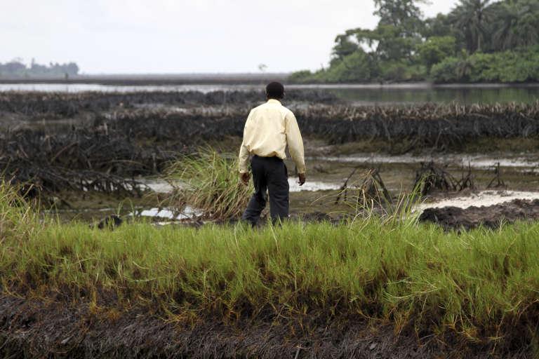 Un paysan du village de Bodo, situé dans le delta du Niger. Des fuites d'hydrocarbures sur les oléoducs du Shell ont pollué les champs.