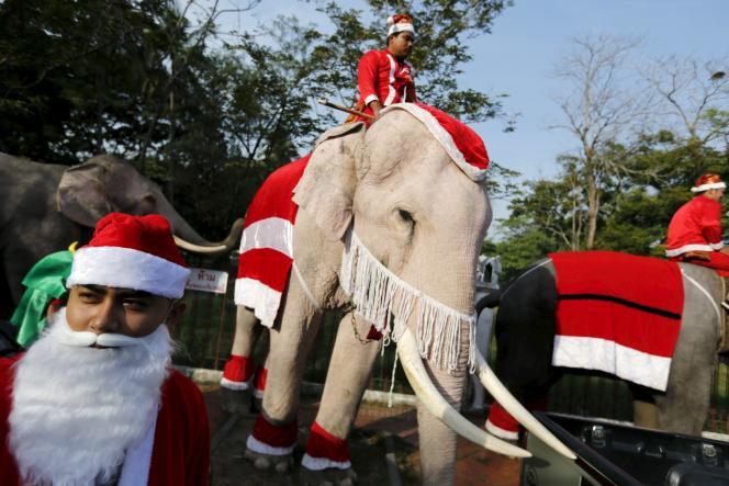 Parade d'éléphants lors d'un festival de Noël dans une école primaire à Ayutthaya, enThaïlande, le 24décembre2015.