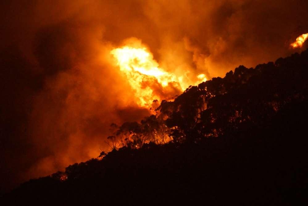 Les incendies de bush, un mélange de forêts et de broussailles, sont légion en Australie pendant l'été austral. Les feux de forêt ont fait sept morts cette année.