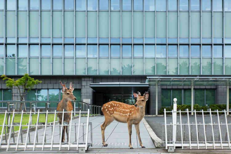 A l'entrée du Tribunal de district de Nara.