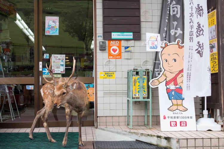 Boutique de souvenirs à Nara.