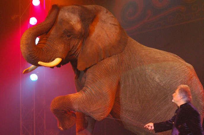 L'éléphante Vana Mana du cirque Bouglione.