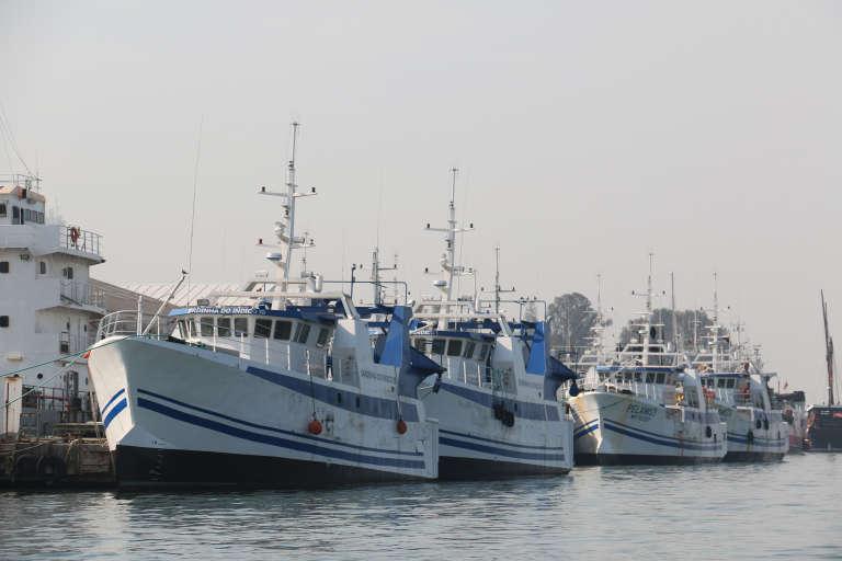 Six des trente bateaux de pêche commandés en 2013 aux Constructions mécaniques de Normandie à Cherbourg, par l'entreprise mozambicaine Ematum.