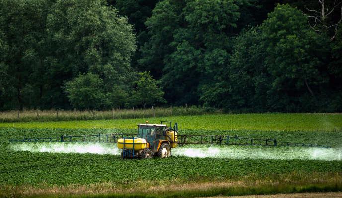 Un agriculteur arrose son champ de pesticides le 15 juin à Bailleul.