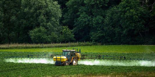 Un agriculteur procède à un épandage de pesticides sur ses cultures à Bailleul, dans le nord de la France, en juin 2015.