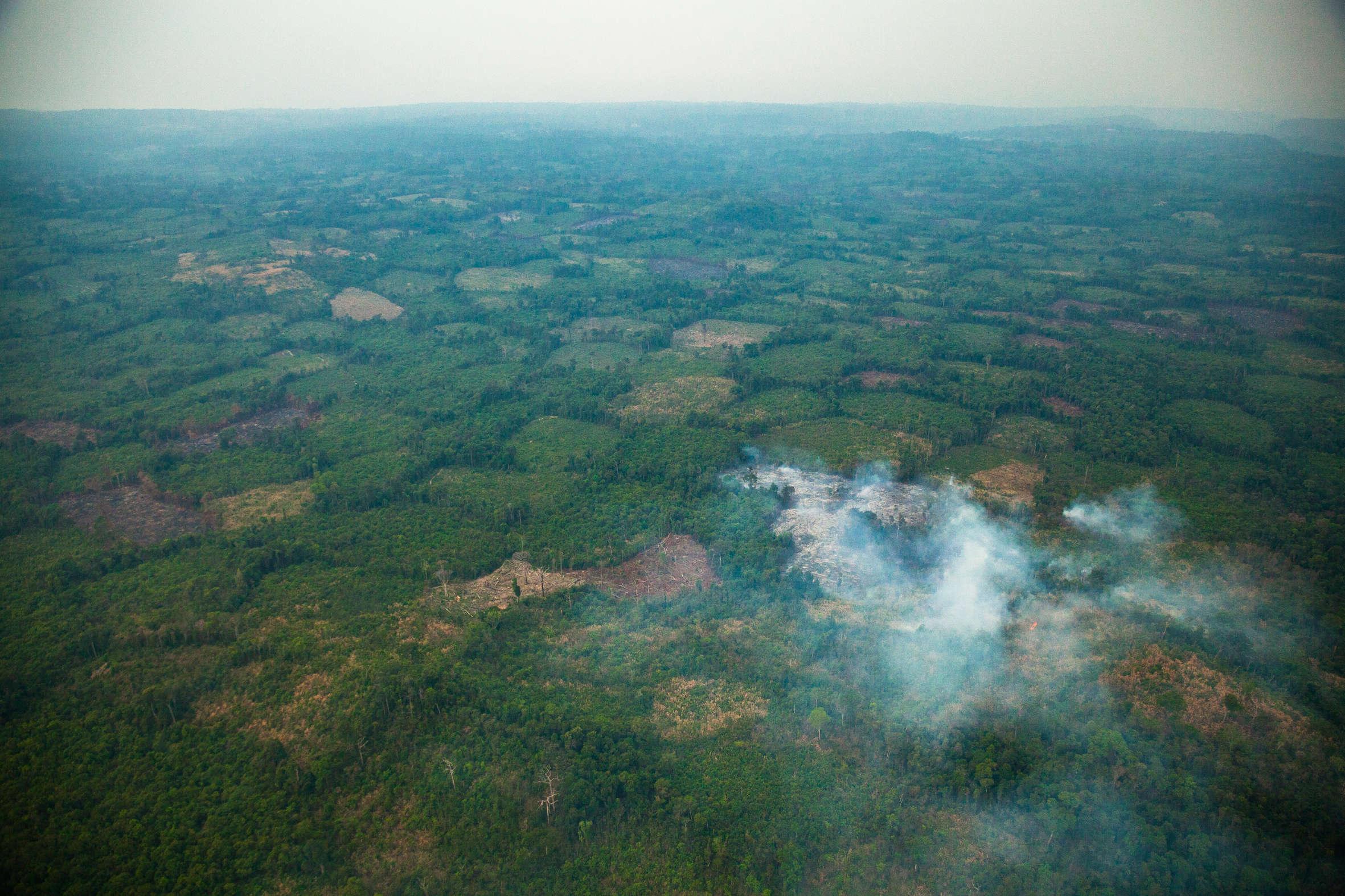 Vue aérienne du haut plateau du Phnom Kulen, berceau de l'empire khmer. Ce  château d'eau, garantissant la stabilité des sanctuaires angkoriens avec leurs douves, canaux et bassins, est menacé. La culture sur brûlis de la noix de cajou, très rentable mais illicite, fait des ravages comme le montre cette photo. La forêt n'occupe plus que 20 % de la surface totale du parc.