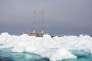 """Le voilier """"Tara"""" au milieu des glaces en Arctique."""