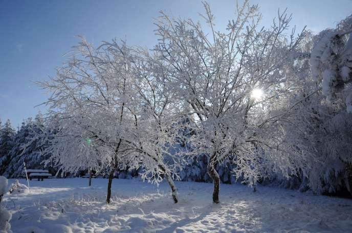 La Moselle, la Meurthe-et-Moselle et le Bas-Rhin seront touchés, vendredi en fin d'après-midi, par le premier épisode neigeux notable de la saison.