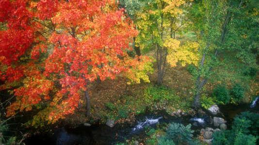 Lumière d'automne en Lozère
