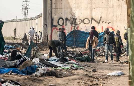 """Réfugiés dans la """"jungle"""" de Calais, 18 janvier 2015.  / AFP / PHILIPPE HUGUEN"""
