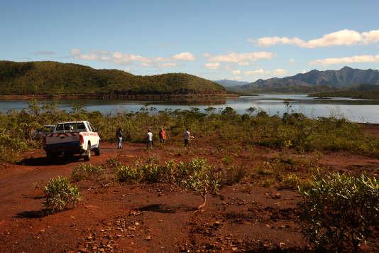 Maquis minier en Province Sud de la Nouvelle-Calédonie.