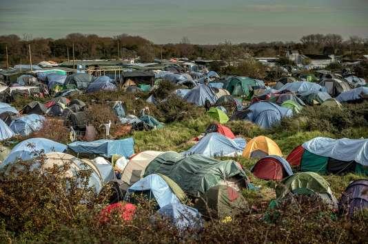 Des centaines de tentes plantées dans la « jungle » de Calais, en novembre 2015.