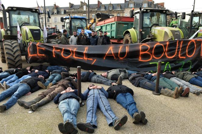 Mobilisation contre les prix bas du lait et de la viande, le 21 janvier au Mans.