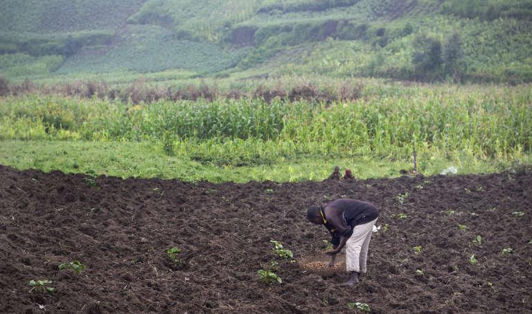 Dans un village de montagne des environs de Bujumbura, le 14 décembre.