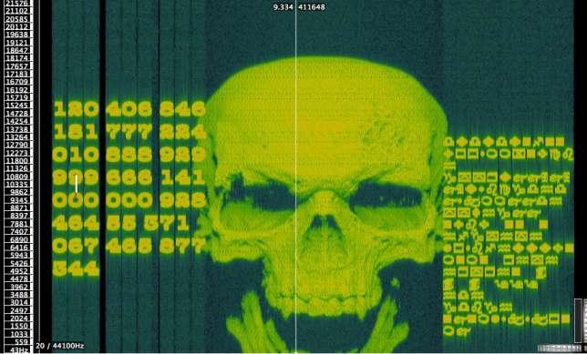 L'analyse du son du menu du DVD fait apparaître un crâne.