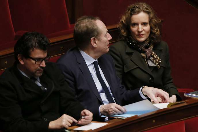 Nathalie Kosciusko-Morizet à l'Assemblée Nationale le 12 janvier 2016.