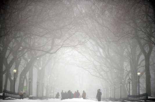 Le blizzard s'engouffrant dans Central Park, à New York, le 23 janvier 2016, pendant le passage de la tempête de neige Jonas.