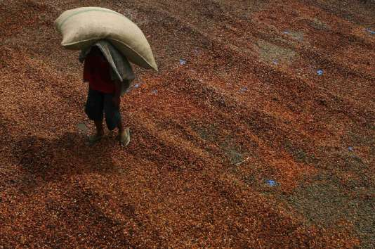 La Côte d'Ivoire compte s'appuyer sur son agriculture, qui contribue à hauteur de 22,4% à son produit intérieur brut, afin de développer, en aval de la production agricole, une industrie de transformation. Premier producteur mondial de cacao, la Côte d'Ivoire ne transforme que 35% de ses fèves.