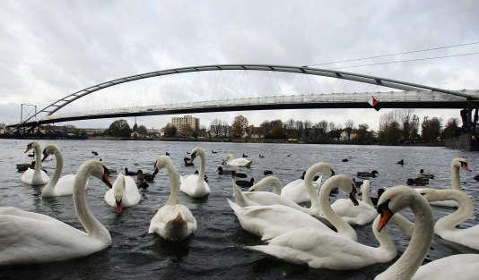 Pont piétonnier reliant la ville française de Huningue et  la ville allemande de Weil-am-Rhein à l'extrême sud-Ouest de l'Allemagne. Le 12 novembre 2006.