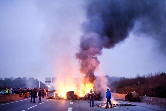 Des agriculteurs ont bloqué la RN 165 près de Lorient, le 25 janvier 2016, pour dénoncer les cours trop bas du bœuf, du porc et du lait.