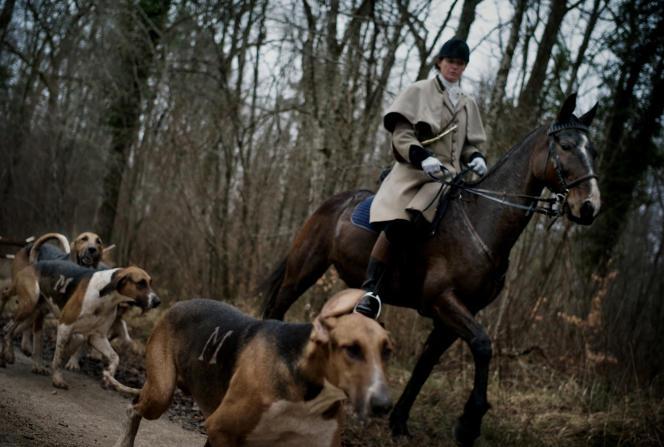 Un chasseur dans la forêts de Chatillon, dans l'est de la France, en 2009.