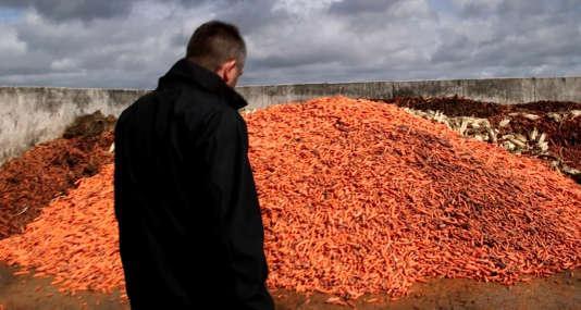 La carotte est le deuxième légume préféré des Français.