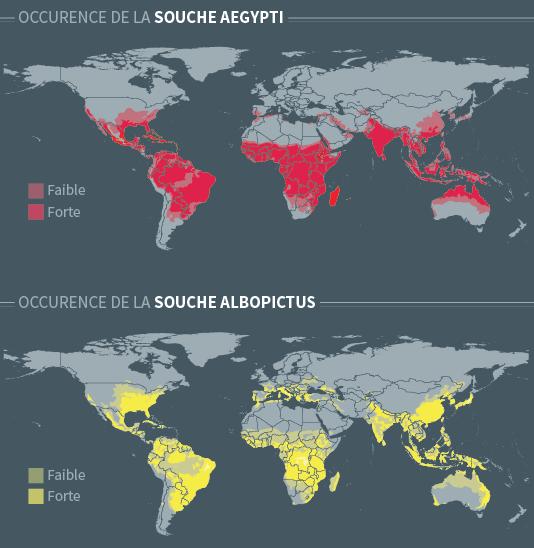 Présence du virus Zika sur la planète.