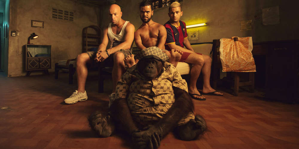 Enraciné dans l'écosystème d'une cité de banlieue, le film embarque rapidement pour Pattaya, capitale thaïlandaise du tourisme sexuel, dans une aventure inepte, support d'une compilation de blagues d'un goût pour le moins incertain, dont les transsexuels et les nains sont les cibles privilégiées.