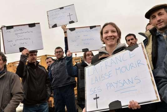 Manifestations d'agriculteurs dans la Sarthe, le 29janvier.